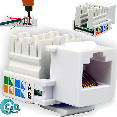 RJ45 Ethernet Network LAN Cat5e Cat 5 Wall End Plug Madule Adapter Keystone Jack