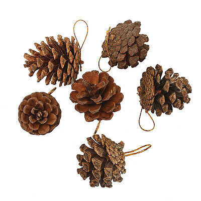 Hanging Pine Cones Pack of 9