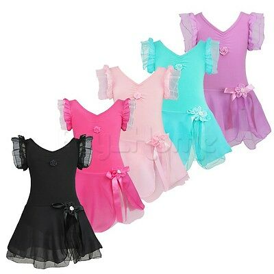 Toddler Girls Ballet Leotard Dress Gymnastics Dance Tutu Skirt Dancewear Costume