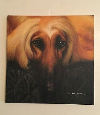 Afghan hound painting 2 of (2)
