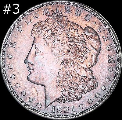 1921 Morgan Silver Dollar Selection Lot BU MS Rainbow Color Toned Gems