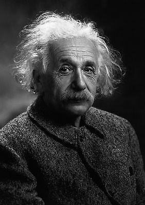 """Albert Einstein Poster///""""Anyone who has never made a mistake...17x22 inches"""