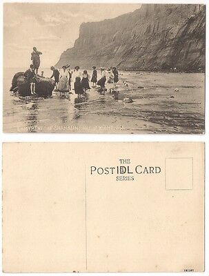 """""""ENJOYMENT"""" AT SHANKLIN, ISLE OF WIGHT c1910 Group on beach"""