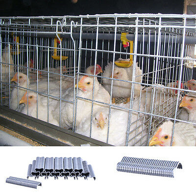 New 600pcs Chicken Bird Rabbit Poultry Cage M-shaped Nails Cage Assembling Tool