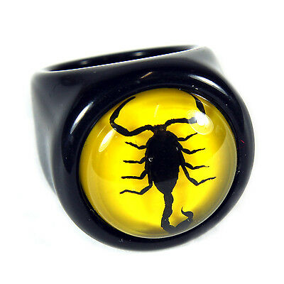 Real Dyed Black Scorpion on Yellow Background Ring Black Ring (R0012)