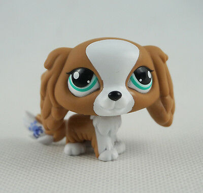 Littlest Pet Shop LPS Toys #1825 Brown & White Puppy King Charles Spaniel Dog
