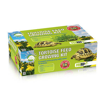 Pro Rep Tortoise Feed Growing Kit Tortoise Food