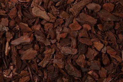 10 Litre ORCHID BARK Chips Pine Bark High Humidity Reptile Vivarium Substrate