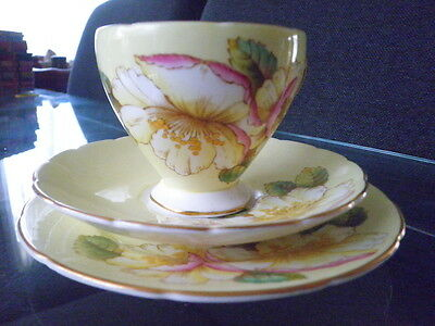 Beautiful Eb Foley Trio Cup Saucer And Plate