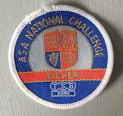 VINTAGE Swimming Badge Patch 80's ASA National Challenge Silver TSB Bank