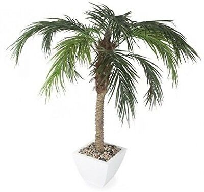 Closer To Nature Artificial 5ft Pygmy Date Palm Tree - Artificial Silk Plant