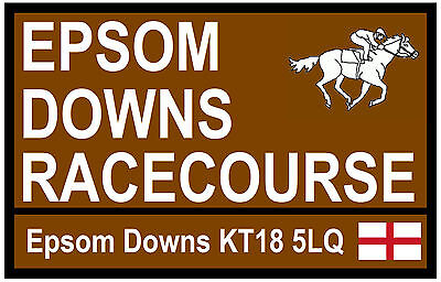 Horse Racing  Road Signs (Epsom Downs) - Fun Souvenir Novelty Fridge Magnet Gift