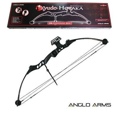 New 55lb High Powered Adult Compound Bow Archery Target Practice