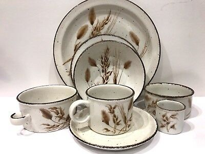 Midwinter Wild Oats Stonehenge England 8 Pc Place Setting Oven to Tableware
