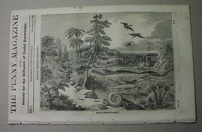 1833: fossils; BRITISH COAL & geology; Rochester Castle; modern wines