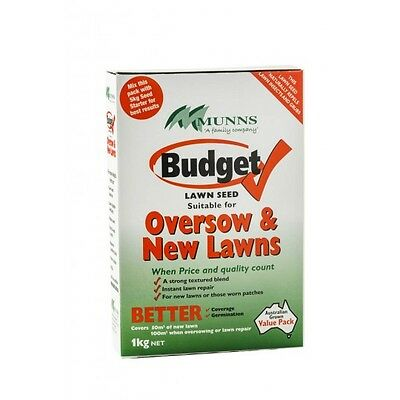 Budget Lawn Seed For Oversow & New Lawns 1Kg