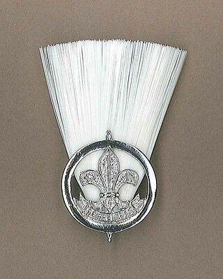 1st Issue AFRICA TOGO SCOUTS District Scout Master (DSM) Metal Plume / Hat Patch