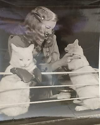 Mary Hartline With The Winner- Super Circus Kitten Match-May Be Autographed