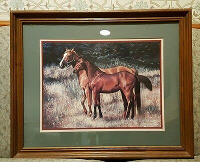 Horse Picture. Robin Brown large vintage