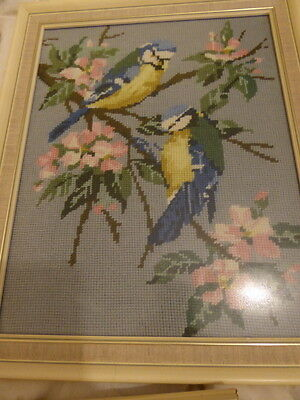 Bird/finches /budgies cross stitch completed finished picture tapestry