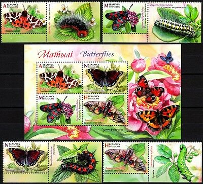 FAUNA: Insects / Butterflies. Flowers. LABELED Pairs & S/sh. BELARUS 2016 (**)
