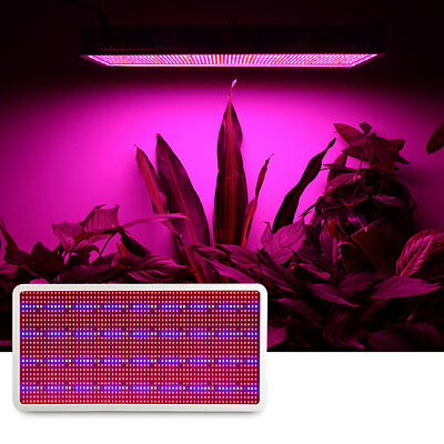 Full Spectrum 6W -1600W  LED Grow Light Lamp Panel For Veg Flower Medical Plant