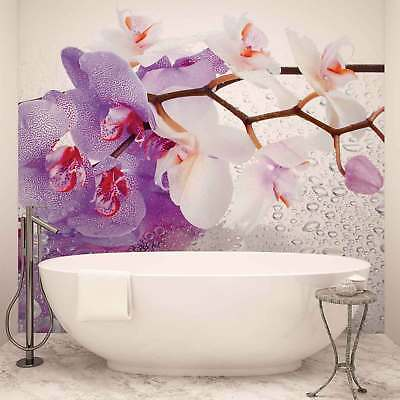 WALL MURAL PHOTO WALLPAPER XXL Flowers Orchids Nature Drops (869WS)