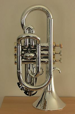 Tromba Plastic Bb Cornet in Silver with Gold Trim