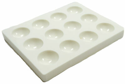 Eisco Labs Polystyrene 12-Well Spot Plate