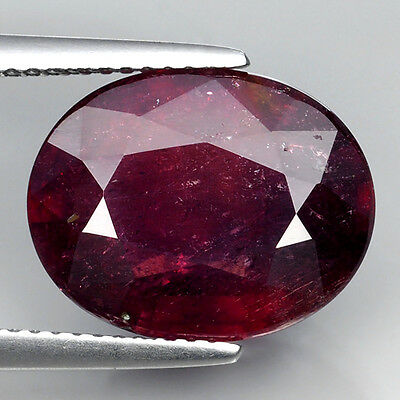 9.84 Ct Superior Piece Of Pigeon Blood Red Natural Ruby Oval Cut Loose Gemstones
