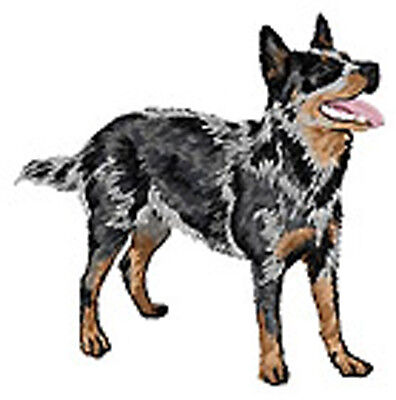 Australian Cattle Dog Portrait  Embroidery Patch