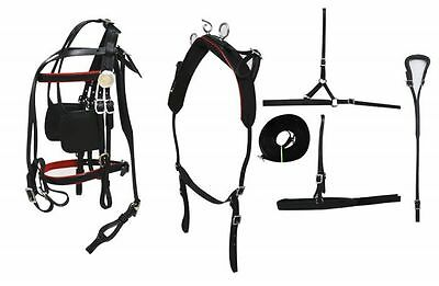 Small - Medium Pony Leather Driving Harness Overcheck Red Piping w/Breeching