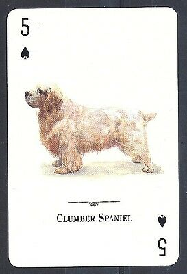 Single Tomas Markevicius Dog Art Playing Card Natural World CLUMBER SPANIEL