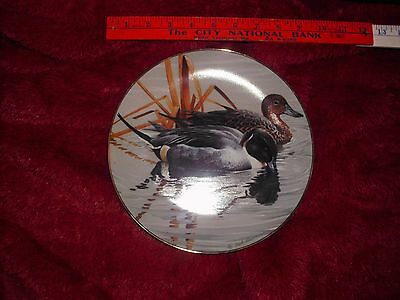 Hamilton 1988 PINTAILS #3  American Waterbirds Ltd Ed Plate Gem no box