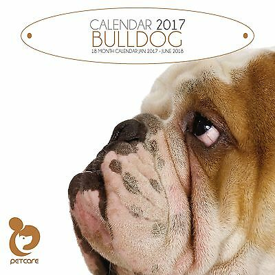 Bulldog Dog Calendar 2017 with free pull out planner
