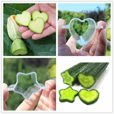 10x Garden Fruit Vegetable Star Heart Cucumber Shaping Mold Growth Forming Tool