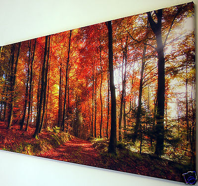 "Woodland Path Autumn Leaves  Canvas Wall Art Picture Large 18"" X 32"" Inch"