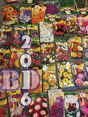 5 PACKS MYSTERY SEEDS - TRY YOUR LUCK! - A LOT OF MIXED FLOWERS - Happy Garden!