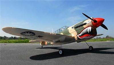 Ready to fly 4ch 2.4 Ghz control P40 warbird,Perfect for flying in the Park!!!!!
