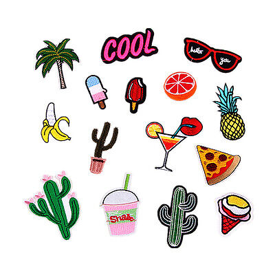 14pcs Embroidred Sew Iron on Patch Badge Fruit Dessert Cactus Applique Fabric