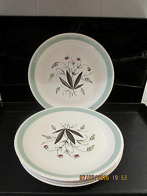 Alfred Meakin Hedgerow 9 INCH SALAD PLATES X 5