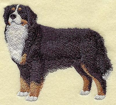 """Bernese Mountain  Dog Embroidered Patch 5.4"""" x 4.6"""""""