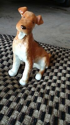 "Lomonoscov Airdale_ Fox Terrier Statue Perfect shape 7"" Gift Child Christmas"