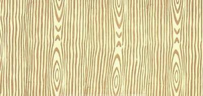 Wood Grain Effect Pattern Paint Embossed Roller 18cm Texture Decorate Stencil