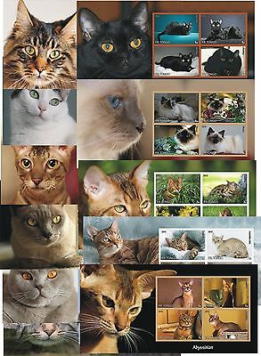 Cats Cat 11 Souvenir Sheets Mnh Imperforated