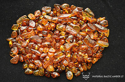 Raw Natural Baltic Amber Loose Polished Beads Chips 25 Grams Color Cognac PK-002