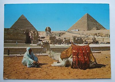 Postcard  - EGYPT - GIZA - The Sphinx and the Pyramids - [1991] - (EX2-17)