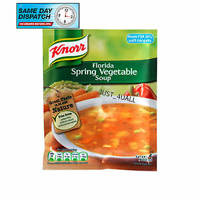 9 X 48g KNORR FLORIDA SPRING VEGETABLE SOUP - PERFECT FOR WEATHER