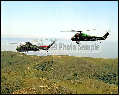 USMC Sikorsky CH-37C Mojave UH-34D Sea Horse 8x10 Photo