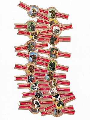 24 cigar bands Rj Dogs  iss in 1970